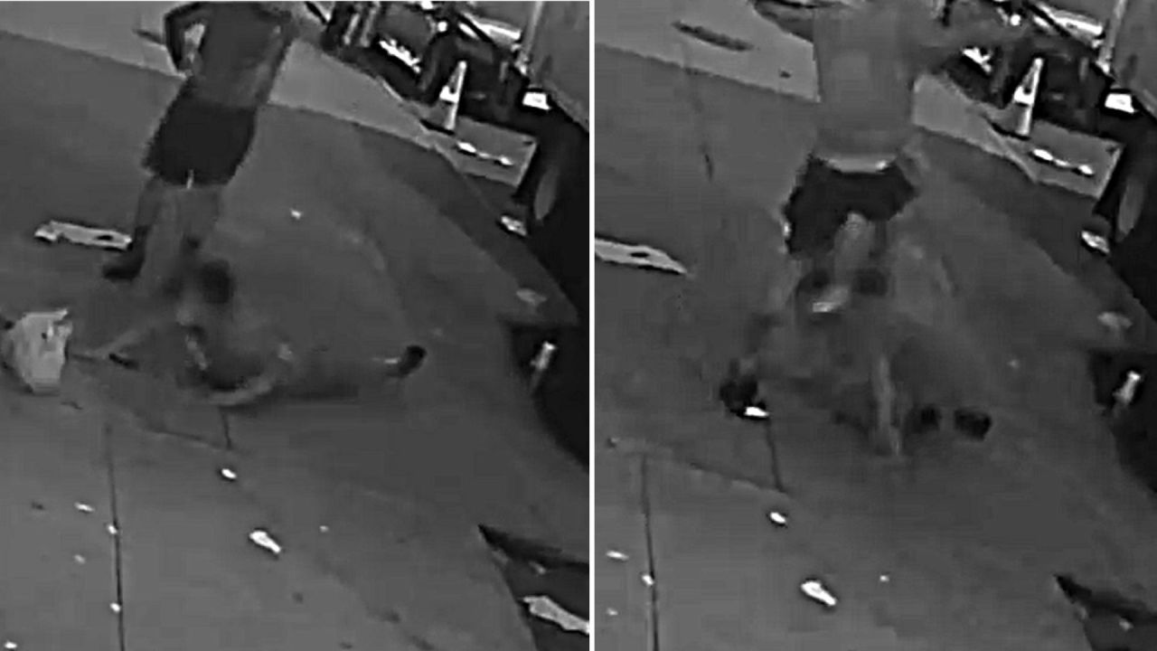 Arrest made in brutal Bronx assault with large rock caught on video: NYPD