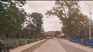Community advocates want repairs, renovations for Red Hook parks