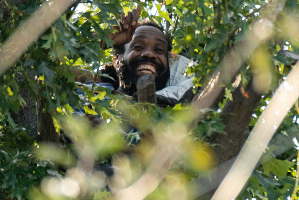 Leaf me alone! Unhinged Queens man climbed up tree to avoid police, where he remains a day later