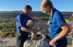 Lucky Dog! Pooch trapped in NY crevice 5 days rescued, unharmed